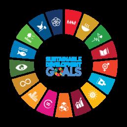 SDGs: da obiettivo a ispirazione e viceversa