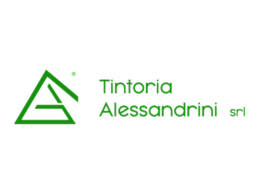 Tinotira Alessandrini 4sustainability