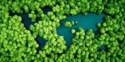Webinar sulle dimensioni ESG della sostenibilità