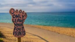 Cinque buone azioni quotidiane per promuovere la sostenibilità ambientale
