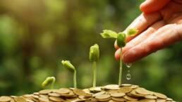 Sostenibilità e mercati finanziari: il Regolamento UE 2019-2088